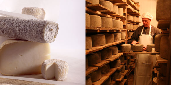 fromage :: © Maud Piderit
